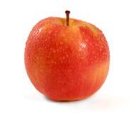 Senhora cor-de-rosa Apple Fotografia de Stock Royalty Free