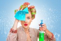 Senhora de limpeza Imagem de Stock