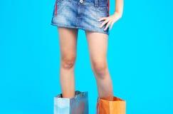 Senhora de saco da compra Fotografia de Stock Royalty Free