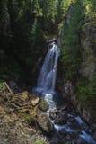 Senhora Falls, parque de Strathcona Fotos de Stock Royalty Free