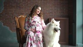 A senhora grávida dos jovens está sentando-se em uma cadeira e pet seu cão branco grande vídeos de arquivo