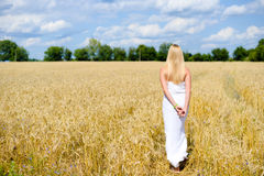 Senhora loura do sexi magro bonito no vestido longo branco Fotos de Stock Royalty Free