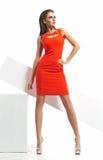 Senhora moreno atrativa na pose séria Imagem de Stock Royalty Free