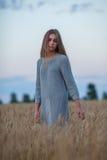 Senhora moreno bonita no campo de trigo no por do sol imagem de stock royalty free
