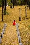 Senhora na floresta do outono Fotografia de Stock Royalty Free