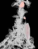 Senhora no branco Imagens de Stock Royalty Free