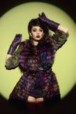 Senhora no casaco de pele luxuoso Fotografia de Stock
