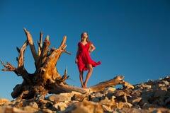 Senhora no vermelho Fotos de Stock Royalty Free