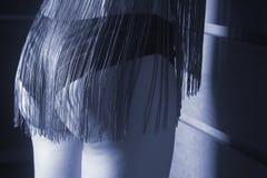 Senhora 'sexy' magro no roupa interior Fotos de Stock