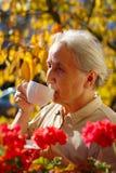 Senhora superior Drinking Tea fotografia de stock