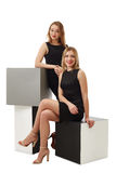 Senhoras bonitas do negócio que levantam no estúdio Imagem de Stock