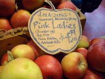 Senhoras cor-de-rosa Fotos de Stock Royalty Free