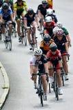 Senhoras do ciclismo Imagens de Stock Royalty Free
