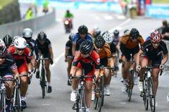 Senhoras do ciclismo Fotografia de Stock