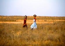 Senhoras que levam, Jaisalmer, Índia Imagens de Stock Royalty Free