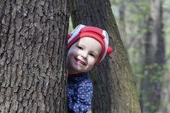 Senhorita na madeira Foto de Stock Royalty Free