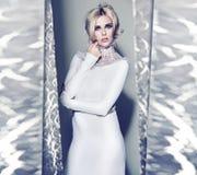 Senhorita Winter em vestido surpreendente Foto de Stock Royalty Free