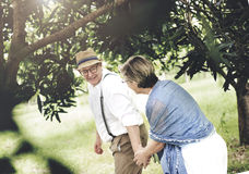 Senior Adult Couple Love Romance Nature Park Concept Stock Image