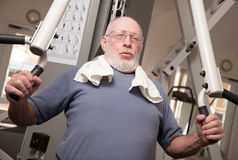 Senior Adult Man in the Gym Royalty Free Stock Photo