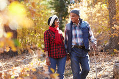 Senior African American Couple Walking Through Fall Woodland royalty free stock image