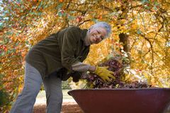 Senior African woman doing yard work in autumn Royalty Free Stock Photo