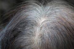 Senior asian woman shows gray hair Stock Photos