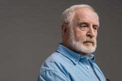 Senior bearded man isolated on grey in studio Royalty Free Stock Photography