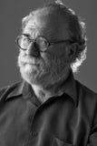 Senior bearded man looks watchful Stock Image