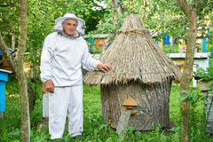 Senior beekeeper working at his apiary Stock Photo