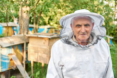 Senior beekeeper working at his apiary Stock Photography