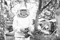 Senior beekeeper working at his apiary Stock Images