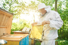 Senior beekeeper working at his apiary Stock Photos
