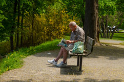 Senior on a bench reading a book. Elderly gentleman sitting on a bench and reading a book Royalty Free Stock Photo