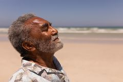 Senior black man with eyes closed standing on beach. Side view of senior black man with eyes closed standing on beach in the sunshine royalty free stock photos