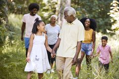 Senior black man and granddaughter walk with family in woods royalty free stock image