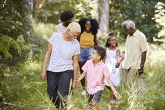 Senior black woman walking with grandson and family in woods stock photography