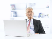 Senior buisnessman working in office Stock Image