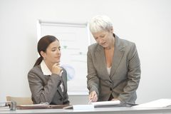 Senior business consultant. Meeting with another businesswoman, working at desk Stock Image