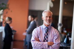 Senior business man with his team at office Royalty Free Stock Photography