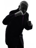 Senior business man punching the air silhouette silhouette Royalty Free Stock Images