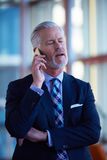 Senior business man talk on mobile phone Stock Images