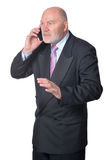 Senior business person. Posing against white background Royalty Free Stock Image