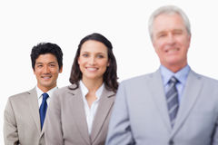 Senior businessman with his team Royalty Free Stock Photo