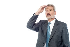 Senior businessman looking from far away Royalty Free Stock Image