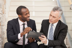 Senior businessman and mid adult businessman working together Royalty Free Stock Images