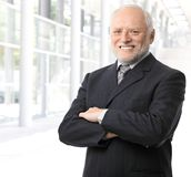 Senior businessman portrait Stock Image