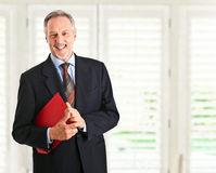 Senior businessman portrait Royalty Free Stock Image