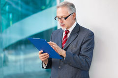 Senior businessman reading a document Stock Image