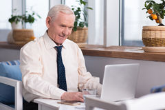 Senior businessman working on his presentation Royalty Free Stock Images