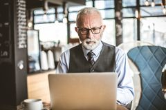 Free Senior Businessmen Working On Laptop. Portrait. Stock Photography - 120980922